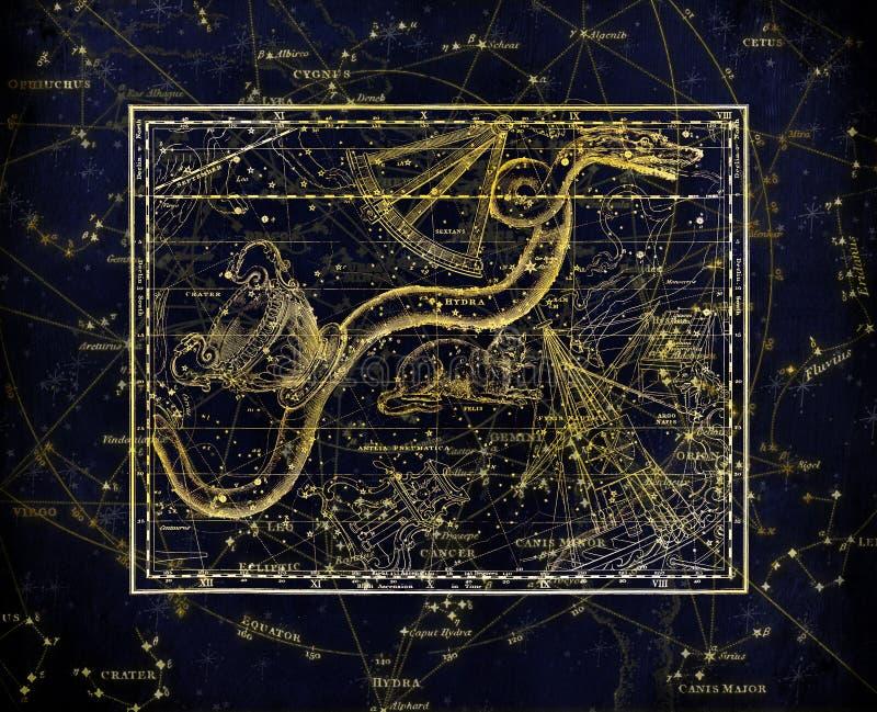 Night, Fractal Art, Organism, Computer Wallpaper stock photography