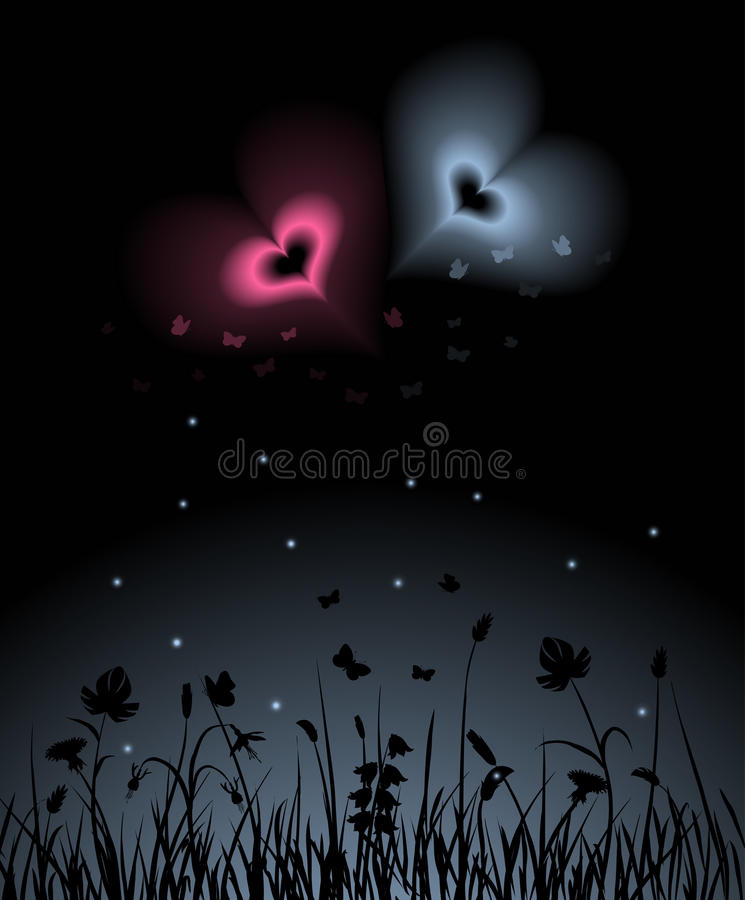 Download Night garden stock vector. Illustration of greeting, enchantment - 12463380