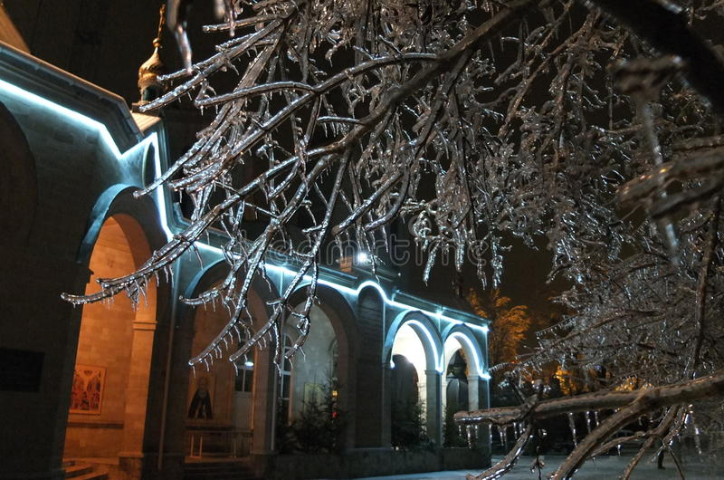 Night and ice on trees royalty free stock images