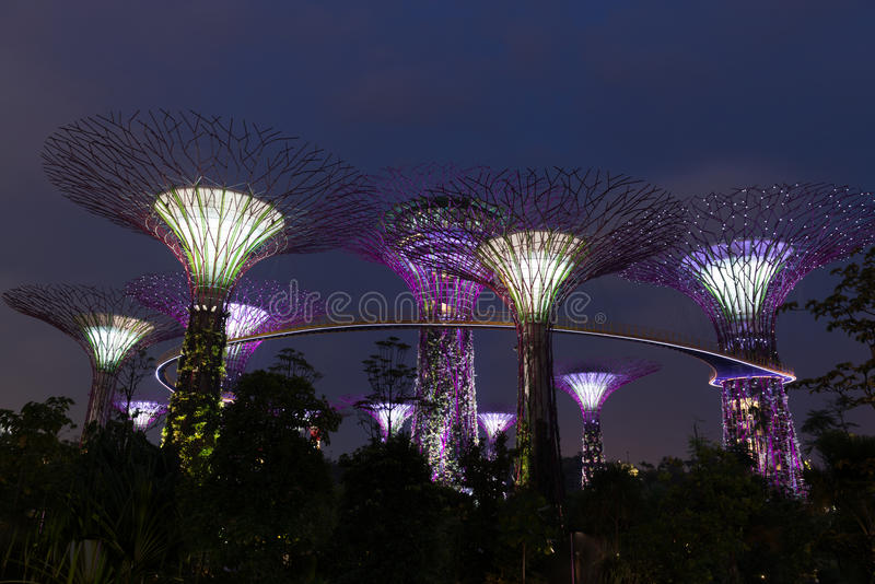 Night illumination in Gardens by the Bay, Singapore stock photography