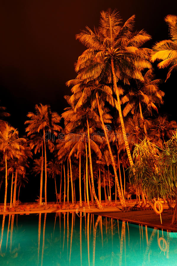Free Night Illumination Of Swimming Pool And Palms Royalty Free Stock Images - 22046739