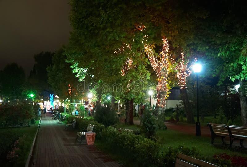 Night Illumination In Park Riviera , Sochi City Royalty Free Stock Photography