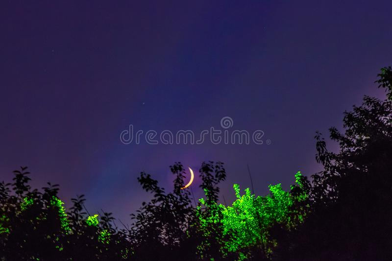 Night landscape moon. Trees fairy tale nature rest tranquility royalty free stock photos