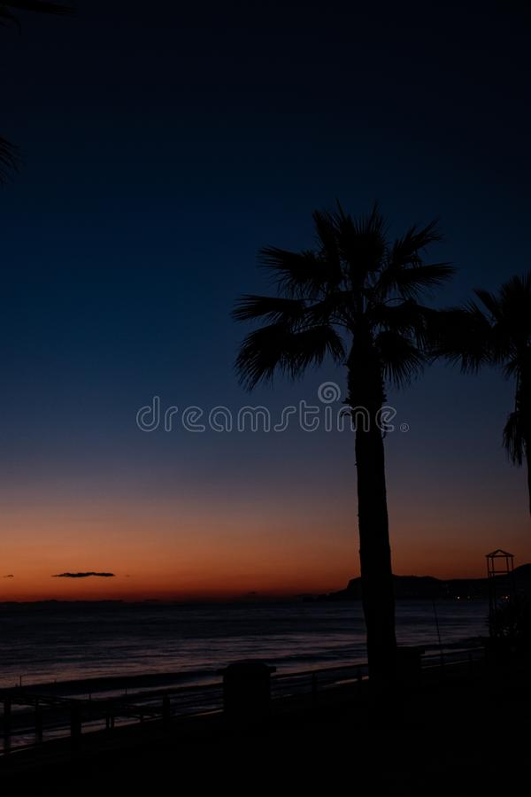 Night landscape, sea, palm trees, sunset, beach, sky, waves, landscape, travel, peace, nature, environment, beautiful views royalty free stock images