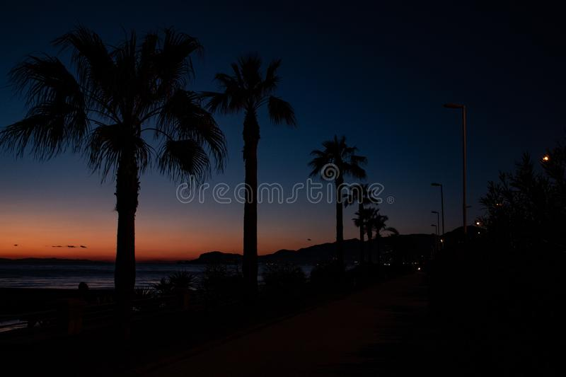 Night landscape, sea, palm trees, sunset, beach, sky, waves, landscape, travel, peace, nature, environment, beautiful views stock image