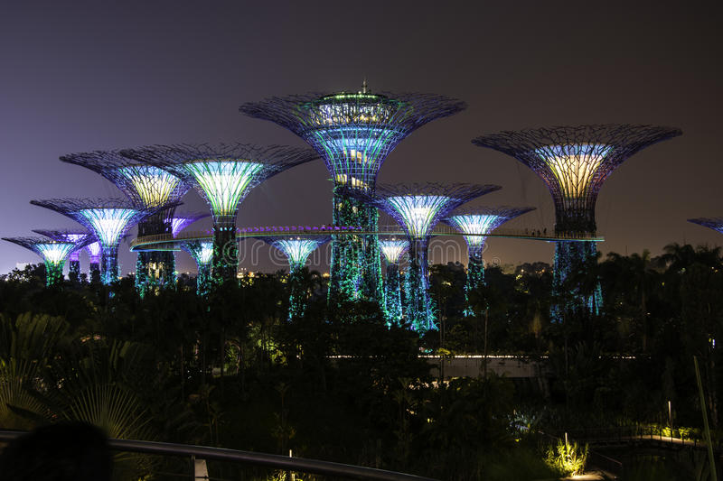 Garden By The Bay Night night light in gardenthe bay singapore. stock photo - image