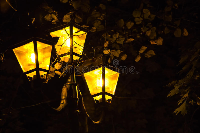 Night lights royalty free stock image