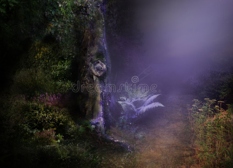 Night in MAgical forest stock illustration