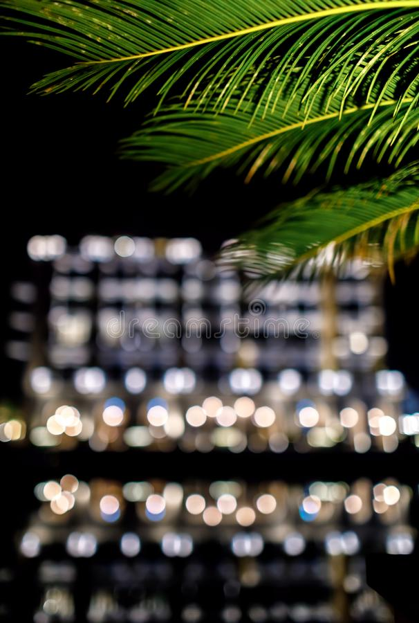 Night moments at sea. Details of the palm tree in the night royalty free stock photo