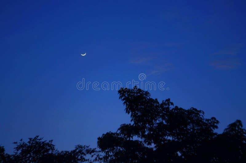Night moon. A beautiful scence moon at night royalty free stock photos
