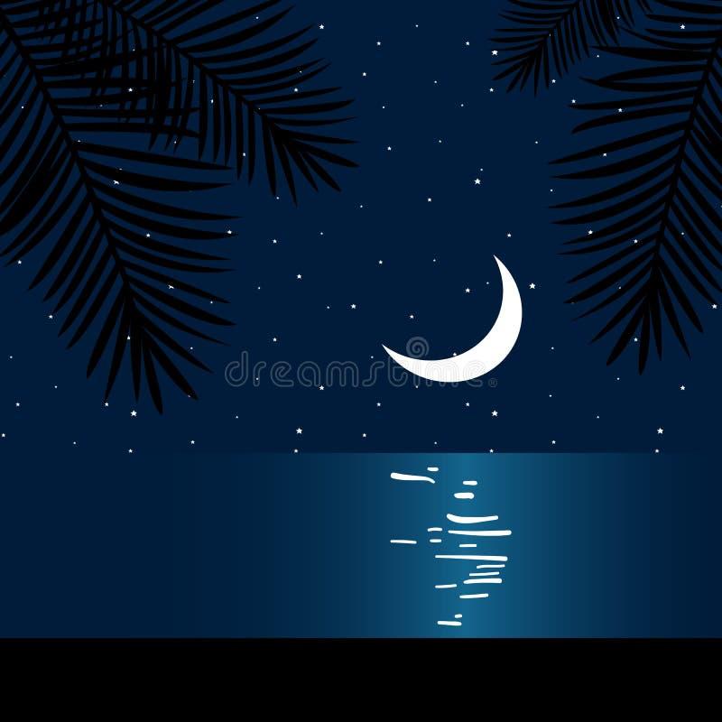 Night moon sea beach palms summer ocean tropical paradise vector illustration
