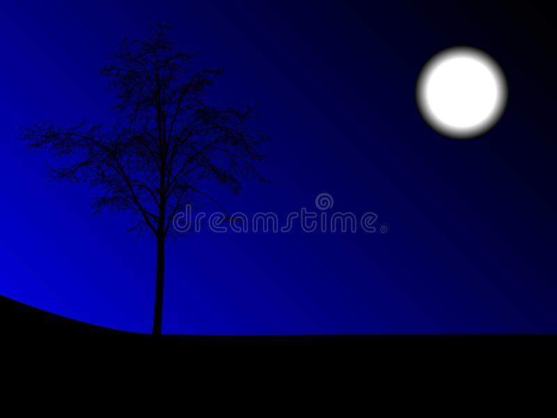 Night in nature royalty free stock image