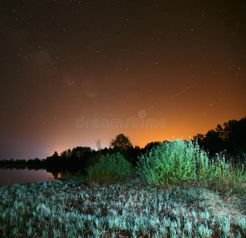 Night over the lake, the stars in the night sky, a falling star. Trees and grass illuminated by a flashlight royalty free stock photography
