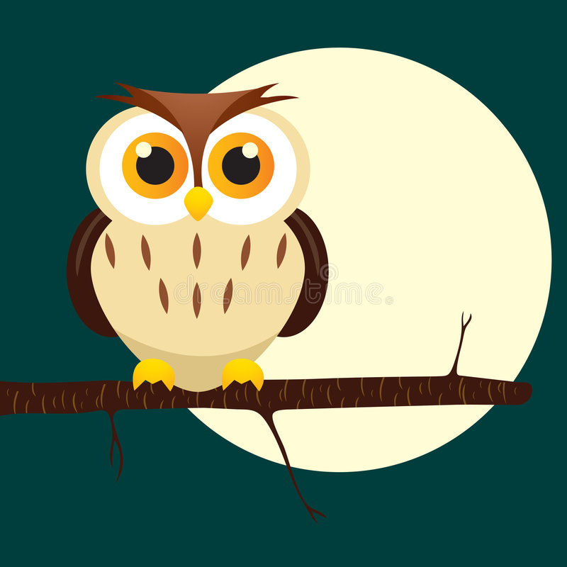 Night Owl On Tree Stock Image