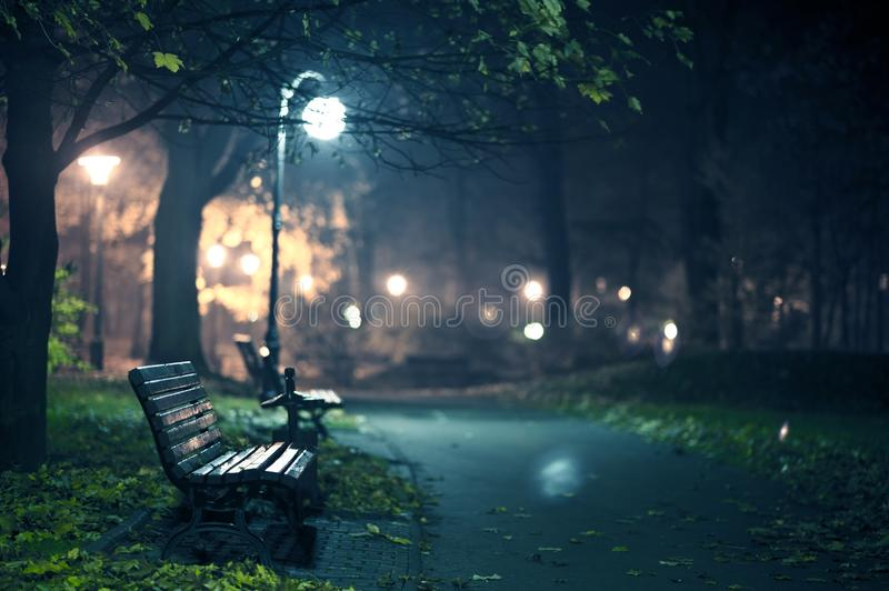 A Night in the Park stock images