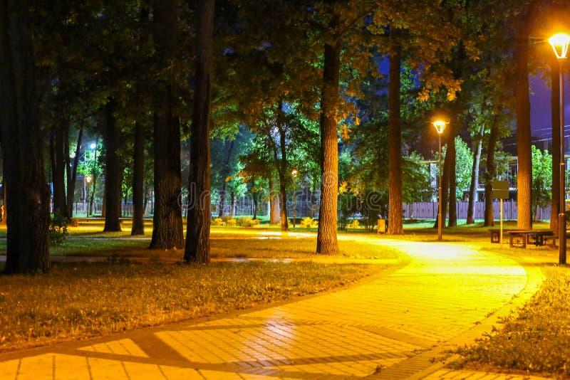 Night park. Beautiful lights stock photography