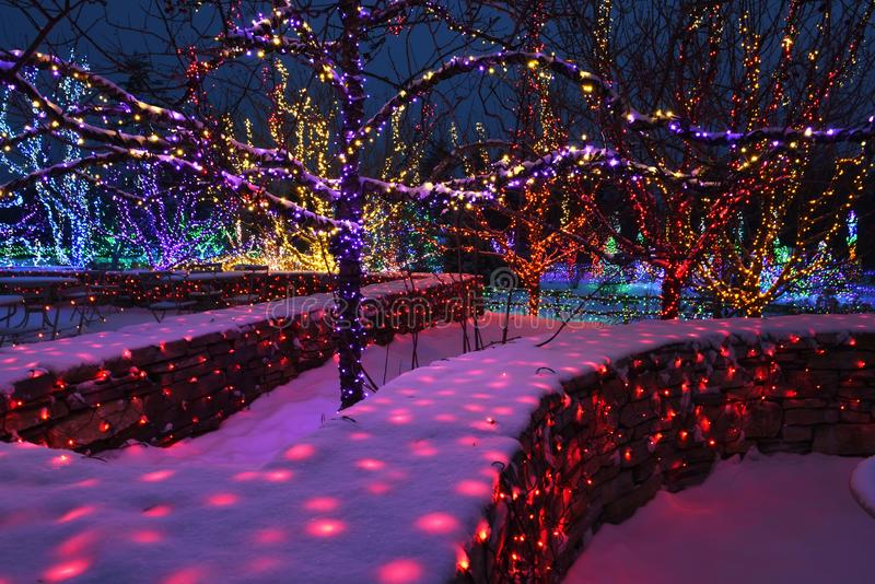 Night photo. Decorated with colored lights and garlands snow-covered garden. The atmosphere of winter holidays and magic. stock photo