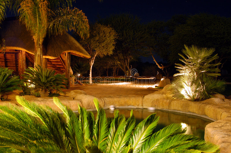 Download Night Pool 01 stock photo. Image of dark, pool, roof, tree - 147258