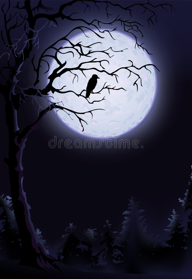 Night raven. On a tree (other landscapes are in my gallery vector illustration