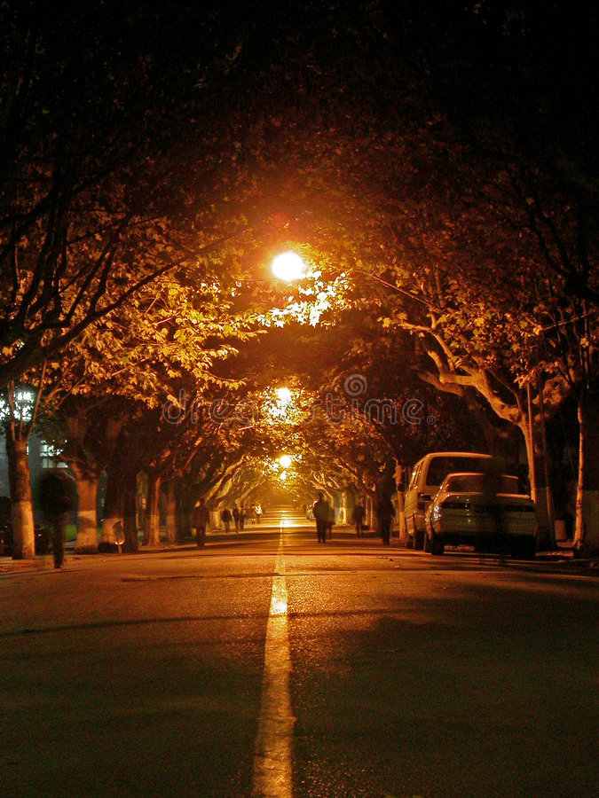 Night road. Of my university royalty free stock image
