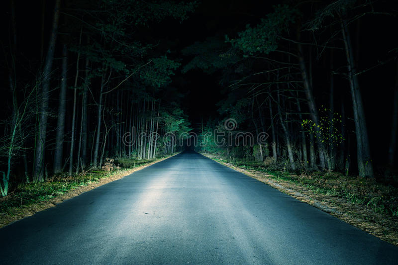 Night Road. On dark forest stock image