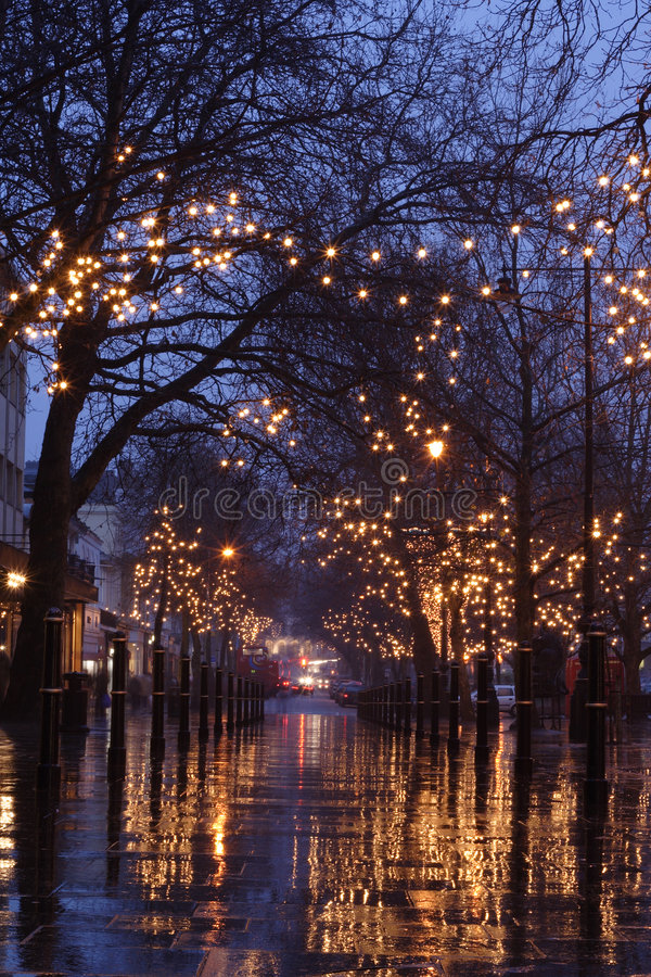 Night scene of Cheltenham Prom. View of Cheltenham Promenade at night, after rainfall with the christmas lights in the trees