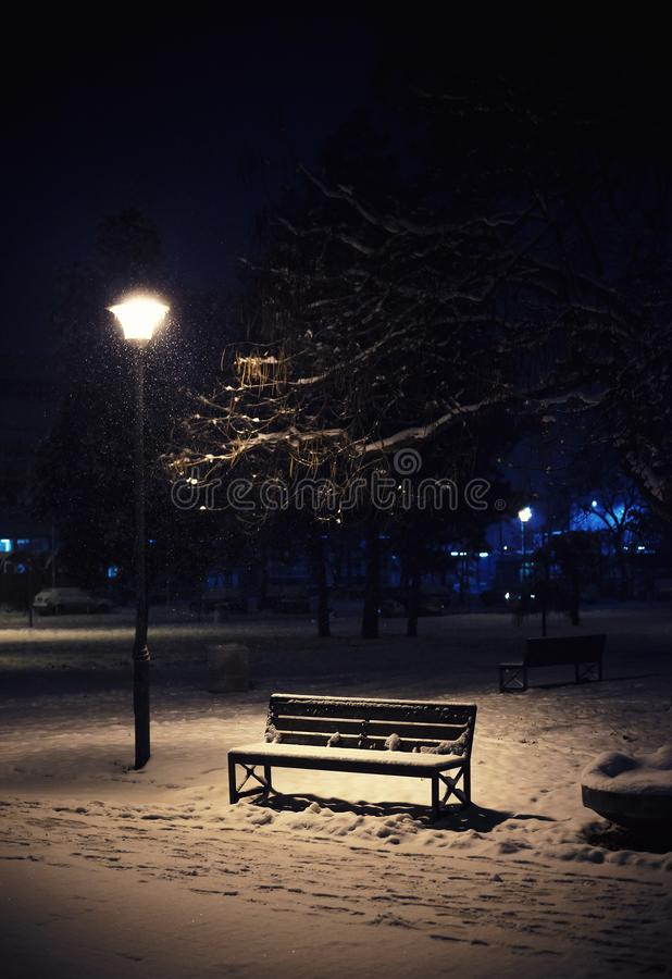 City park in winter royalty free stock image