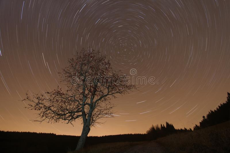 Download Night Scenery With Moving Stars Stock Photo - Image: 22270792