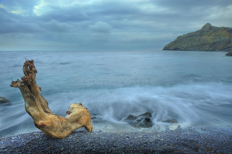 The Night Sea And Timber Royalty Free Stock Images