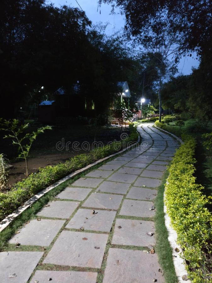 The night seen of nalamala forest resort royalty free stock images