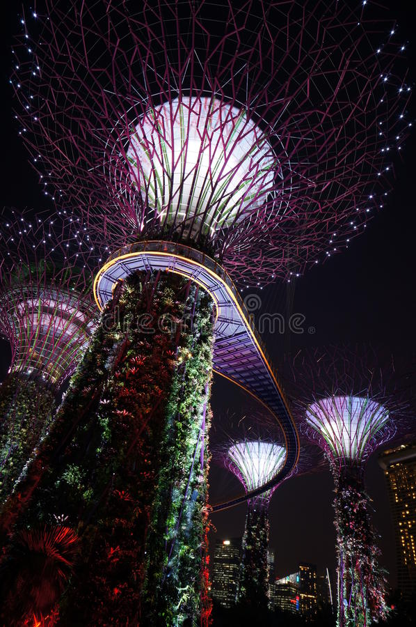 Night at Singapore royalty free stock images