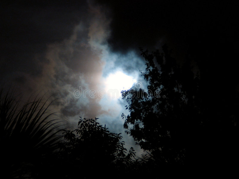 Download Night sky stock image. Image of leaf, cloud, shine, clouds - 12213