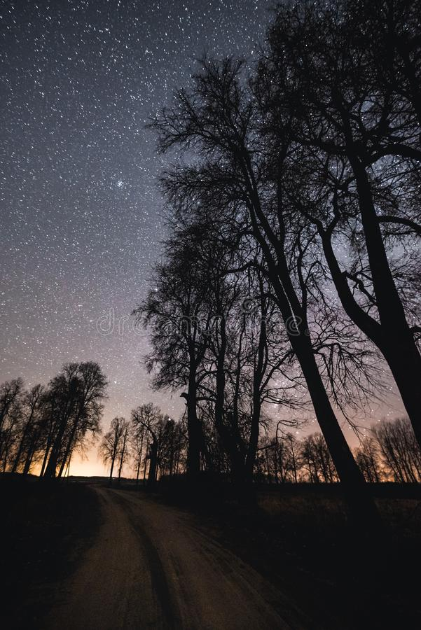Night sky above gravel road and silhouettes of the trees. Night sky above gravel road and silhouettes of the trees stock photo