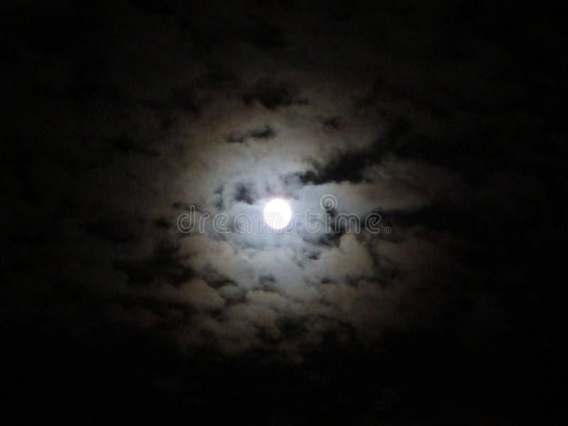 Night Sky at Full Moon royalty free stock photography