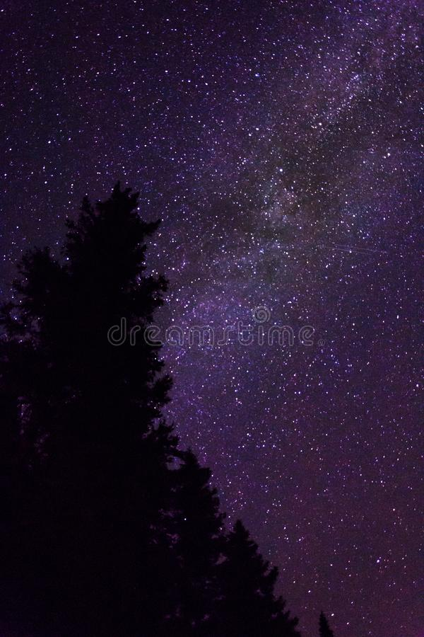 Night sky while kayak camping in Quebec stock images