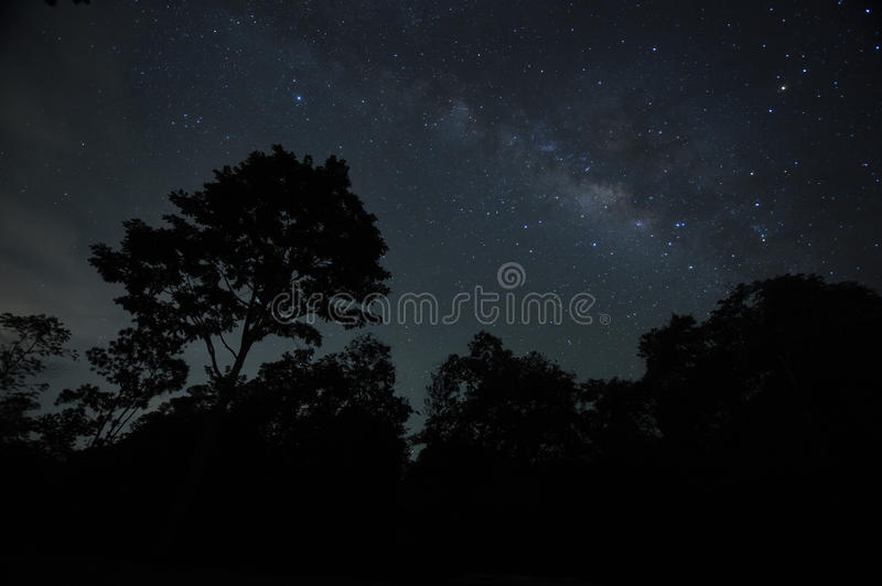 Night sky with the Milky Way over the forest and trees stock image
