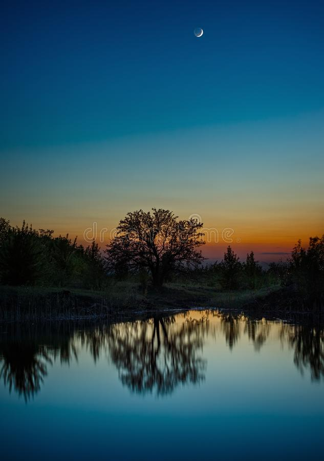 Night sky with the moon after sunset. Landscape with a tree by the lake.  stock photography