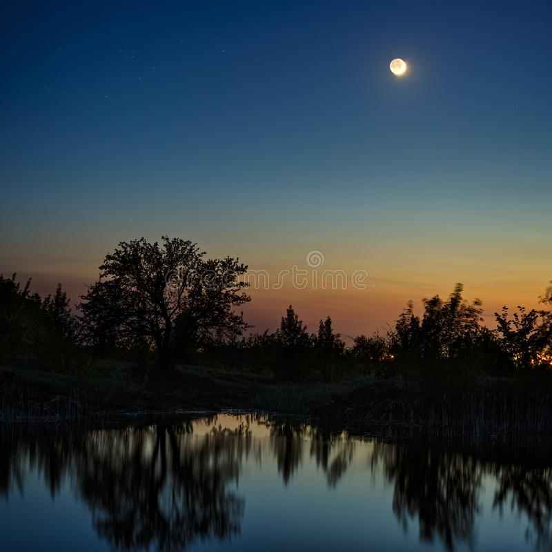 Night sky with the moon after sunset. Landscape with a tree by the lake.  stock photos