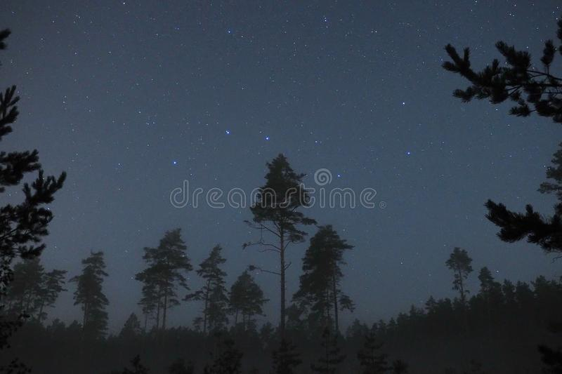 Night sky stars and big dipper constellation observing. Night sky stars, big dipper constellation observing over autumn forest and fog stock images