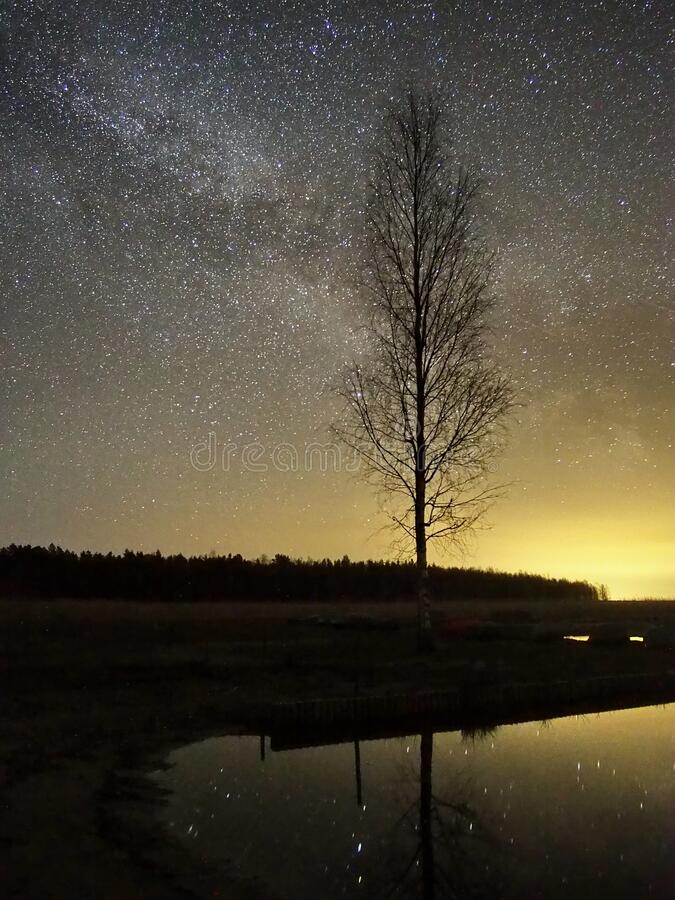 Night sky stars and  milky way over lake stock images