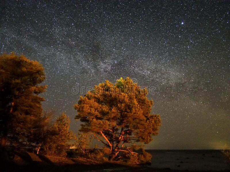 Night sky stars and  milky way panoram royalty free stock photography