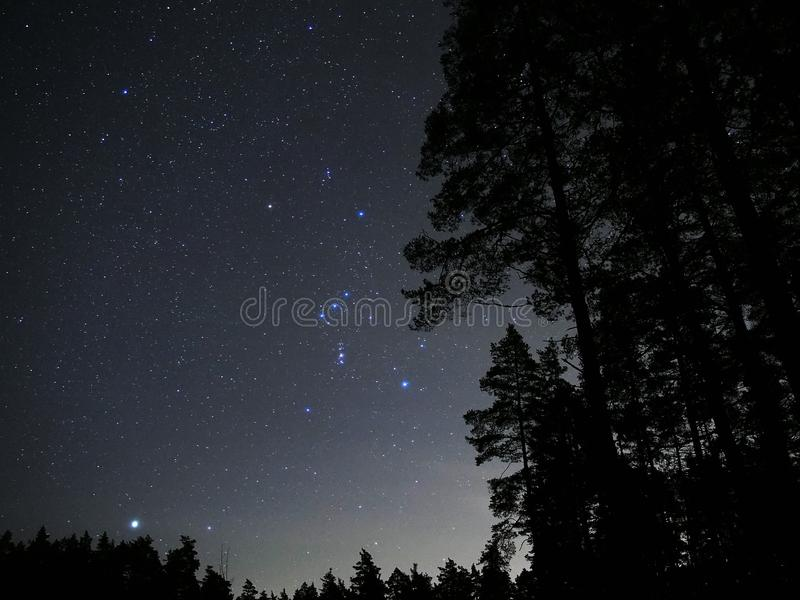 Night sky stars Orion constellation nebulas Sirius star. Night sky stars, Orion Constellation over forest stock photography