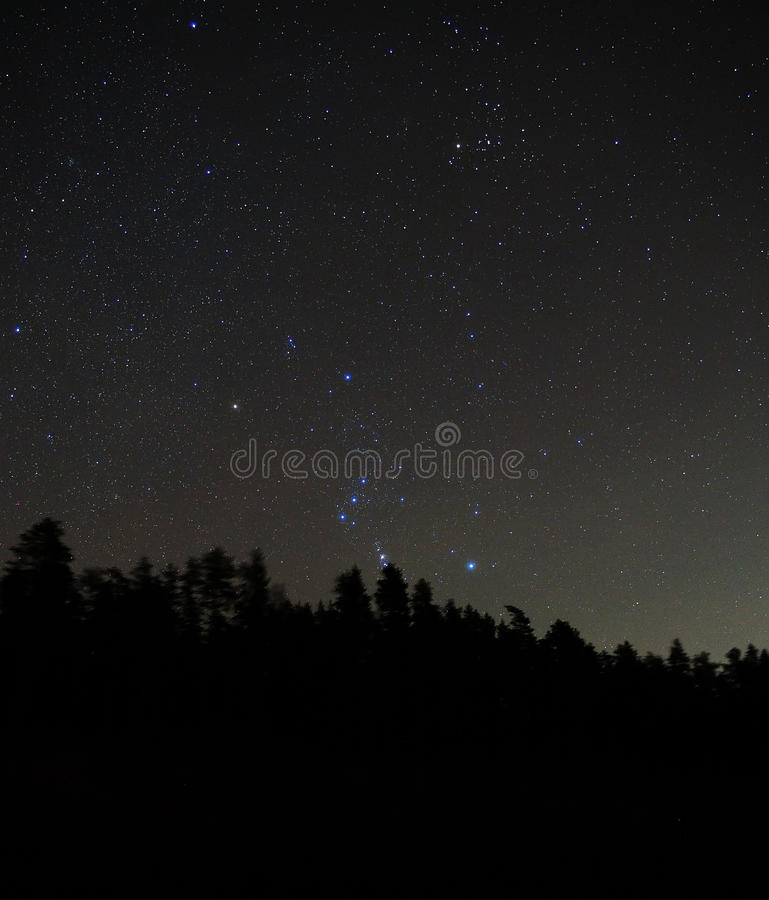 Orion constellation stars in night sky royalty free stock images