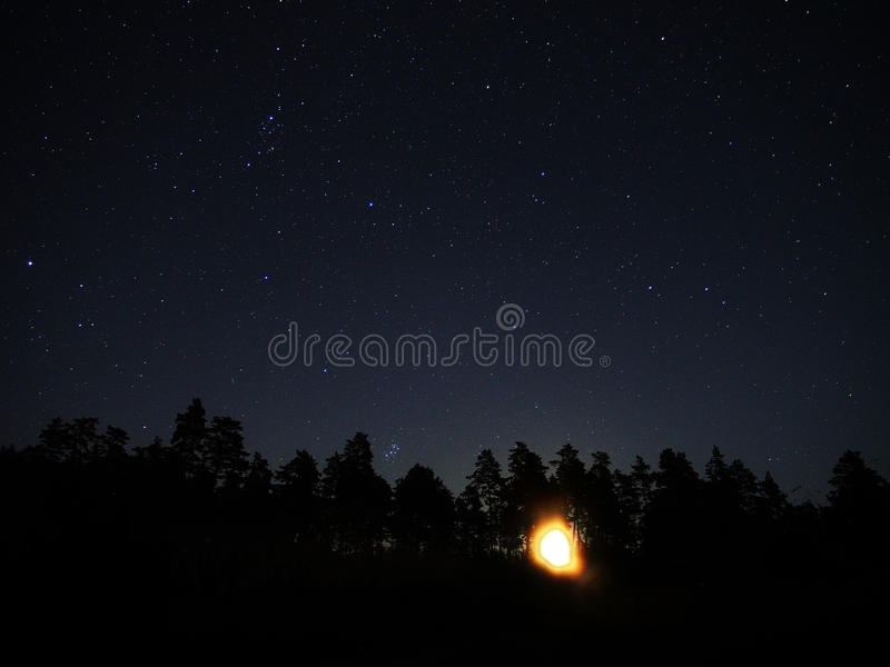 Night sky stars Pleiades and Moon rise over forest stock image