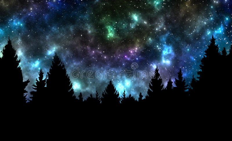 Night sky with stars and trees royalty free stock photography
