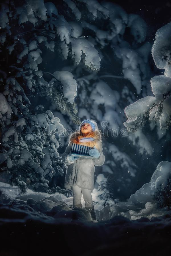 Night in the snowy forest royalty free stock photos