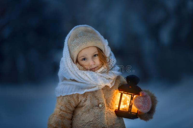Night in the snowy forest stock photo