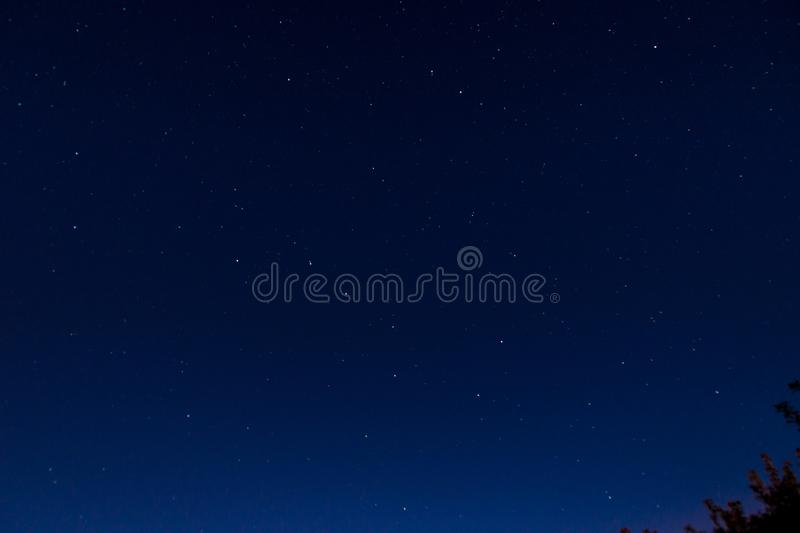 Night starry sky, constellations of big and small bear. Night starry sky, big and small bear constellations, in the corner of a tree branch royalty free stock photo