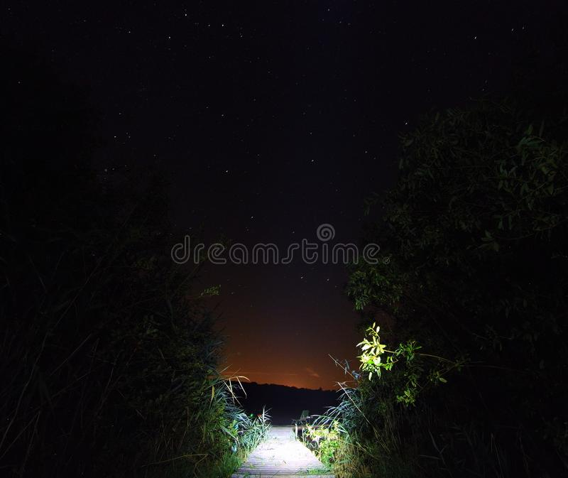Night starry sky with red moonlight on the lake stock photography