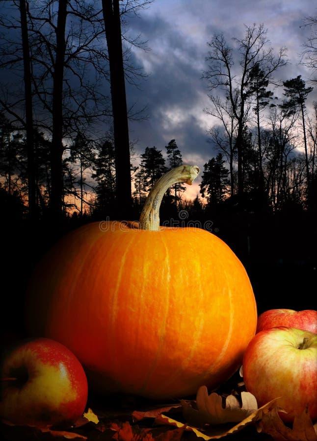 Night still life. To the Halloween stock photos
